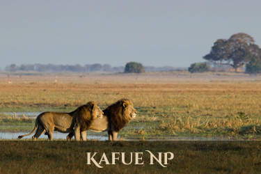 Kafue National Park
