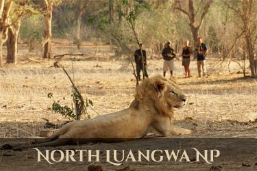 North Luangwe