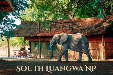 accommodatie South Luangwe