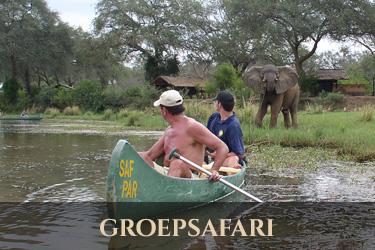 Zambia groepsafari